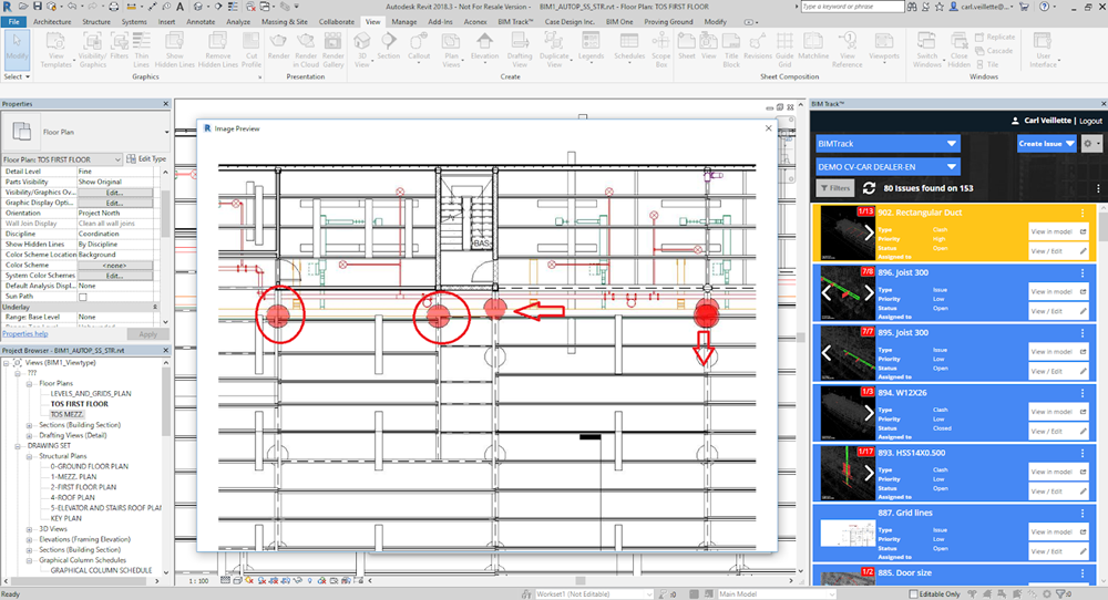 Annotation in Revit with BIM Track